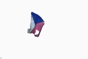 Sháním vlajku..